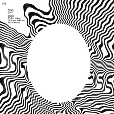 09285-flying-lotus-shabazz-palaces-thundercat-lavishments-light-looking