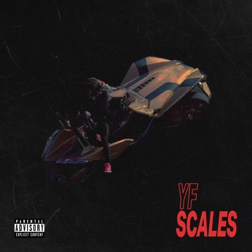 10206-yf-scales