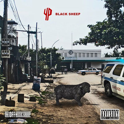 yp-black-sheep